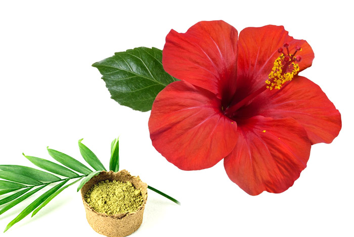 Hibiscus-leaves-and-henna-hair-pack